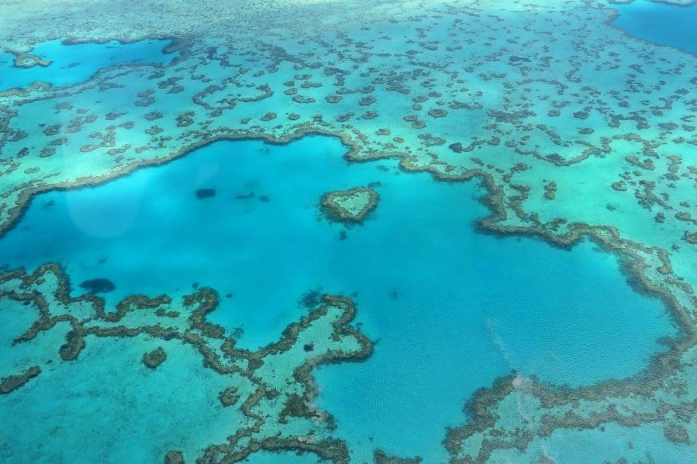 heart-reef-hamilton-island