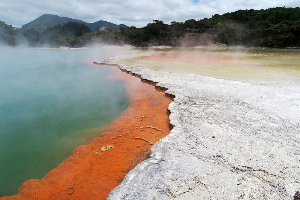 champagne-pool-waiotapu-thermal-wonderland