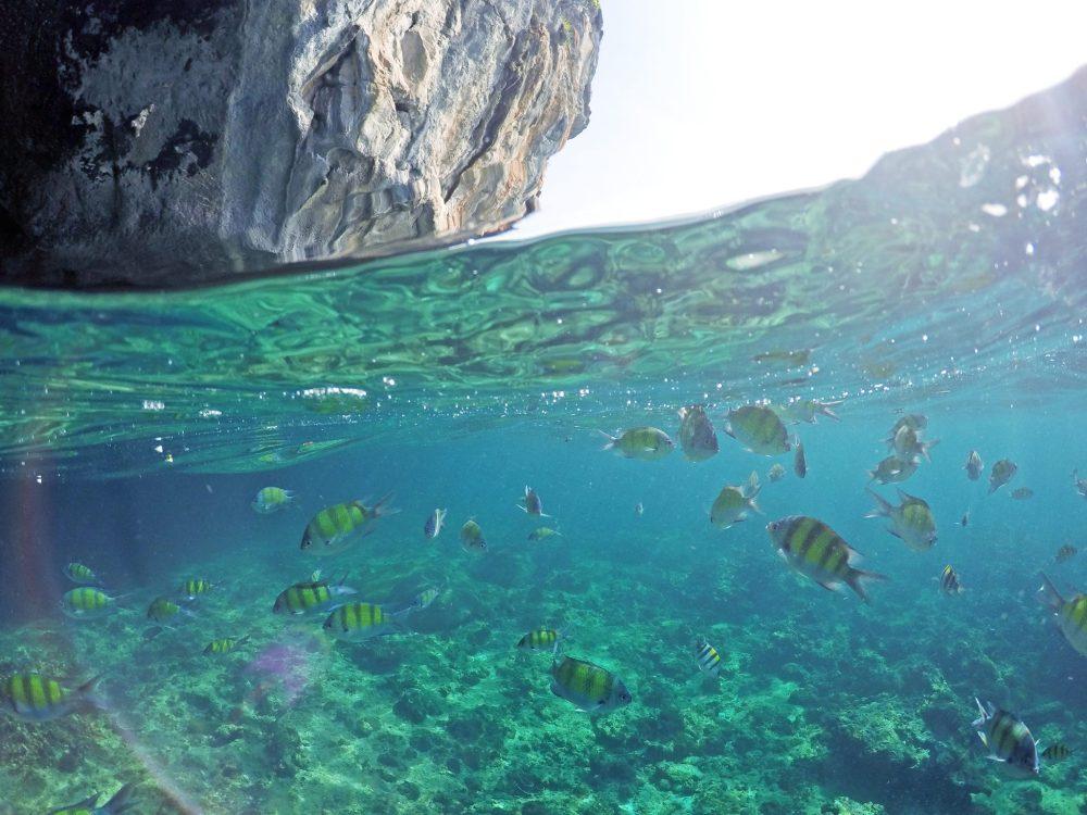 Loh Samah Bay Snorkelling